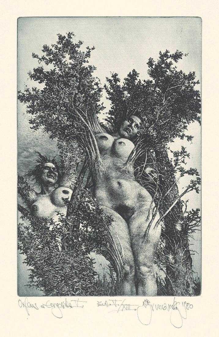 gallery-image-Orfeus a Euridika 5